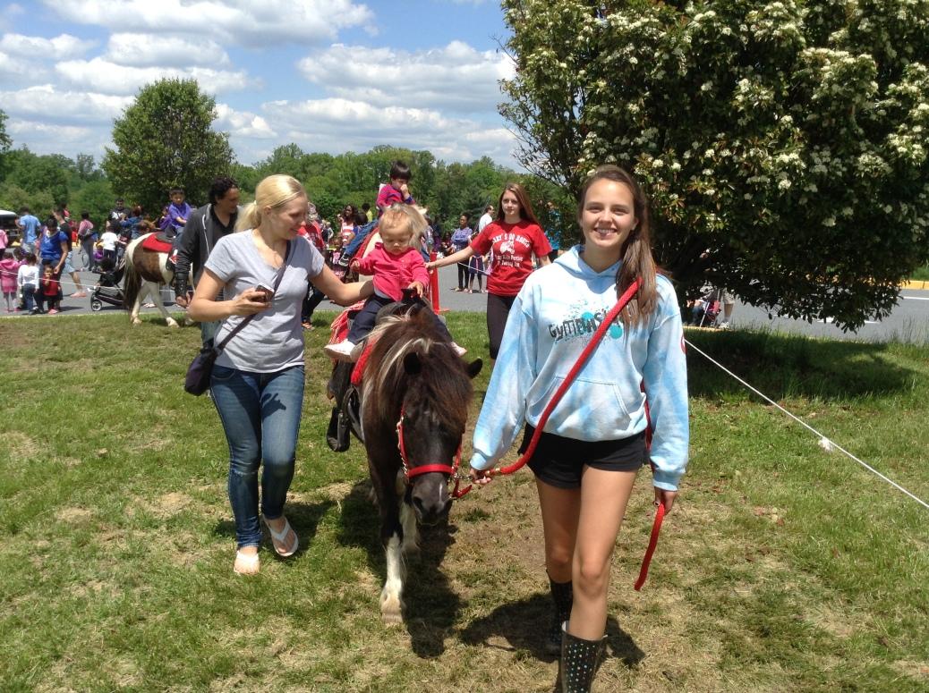 Pony Leader M Cox